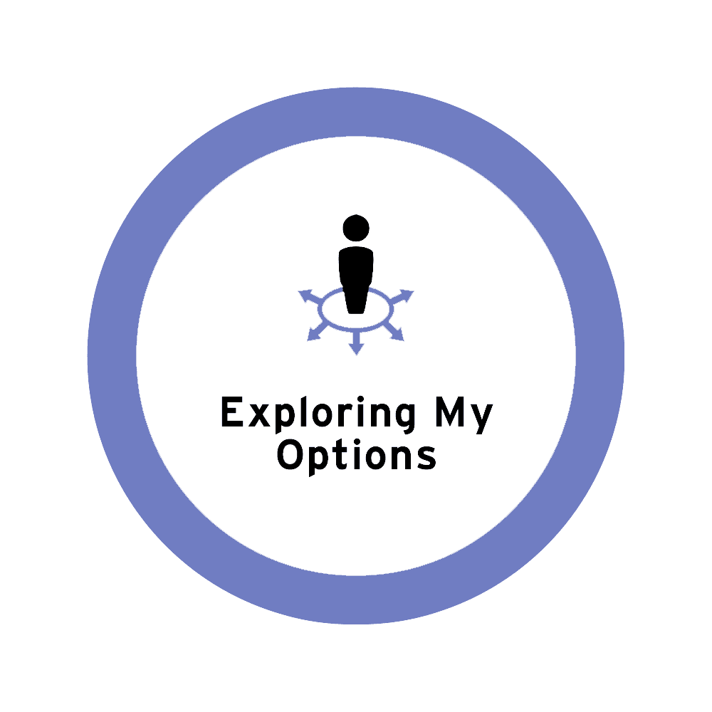 exploring-my-options icon