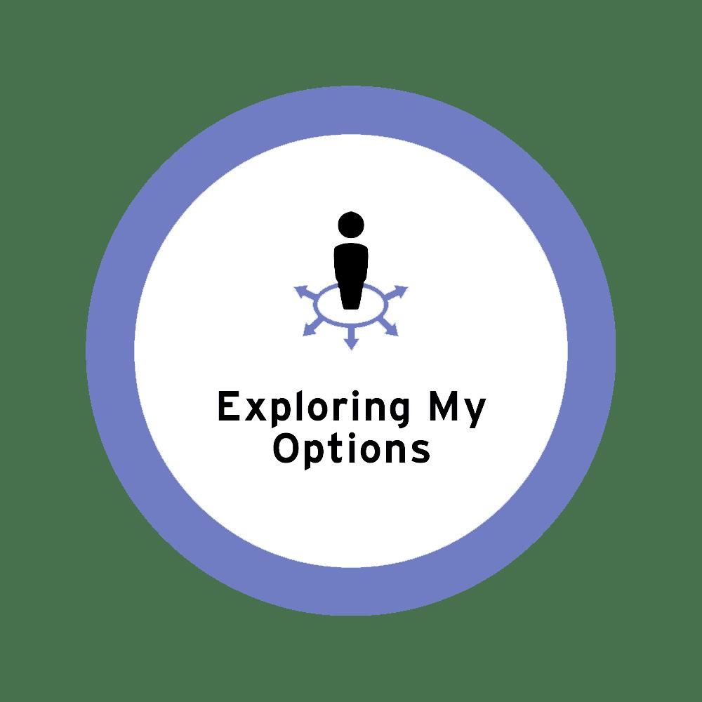 exploring-my-options icon