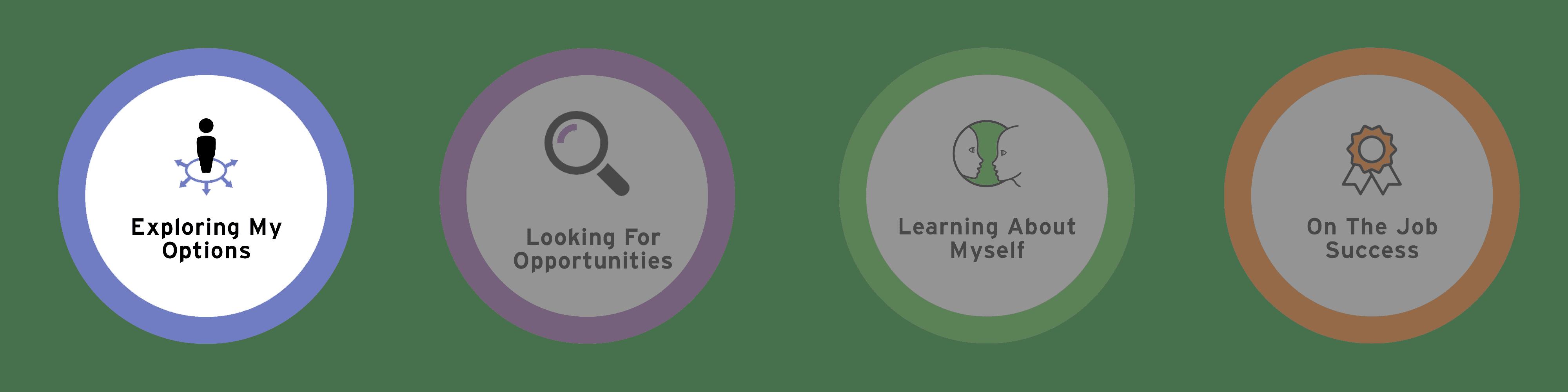 Exploring Options - My Career Plan